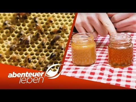 Superfood aus Neuseeland: Ist der Manuka-Honig ein Wundermittel? | Abenteuer Leben | kabel eins