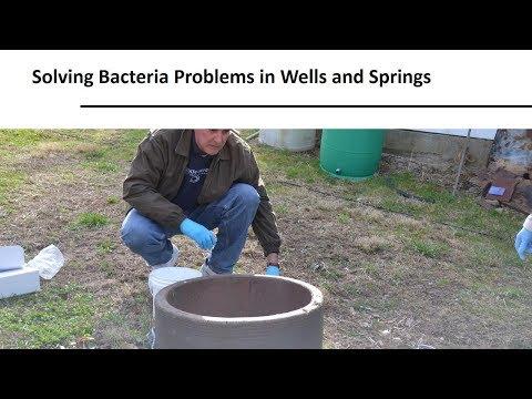 Helminták fertőzése