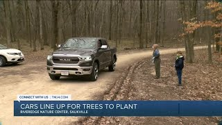Cars line up for trees to plant on Arbor Day