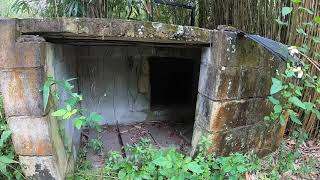 Abandoned Ruins Of Jungleland Zoo, Kissimmee, Fl