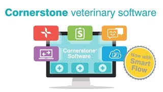 Vidéo de Cornerstone Software