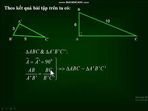 Bài 8: Các trường hợp đồng dạng của tam giác vuông - Hình học 8