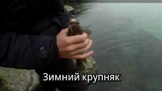 Рыбалка зимой в черном море