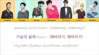 Super Junior Sunflower Colorcoded Han/Rom/Eng