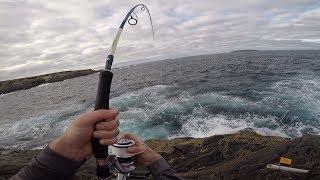 Rock Fishing Australia for Monster Blue Groper