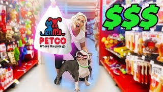 Buying My Dogs Everything They Touch   He Tricked Me