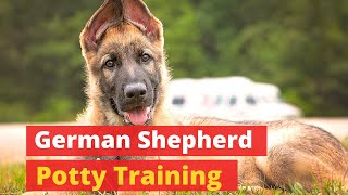 How to Potty Train a German Shepherd Puppy? Some Easy to Follow Tips