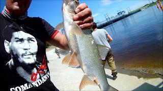 Банда рпк рыбалка в пермском крае березниках