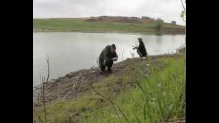 Рыбалка в мае на астрахани