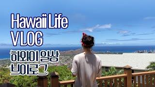 하와이 일상 브이로그 Hawaii Life Vlog