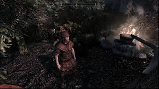 Best Needs Mod Skyrim SE   Realistic Needs & Diseases all in one for USSEP