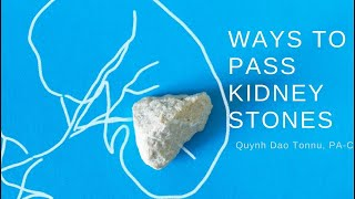 Ways to Pass Kidney Stones - Quynh Dao Tonnu, PA C