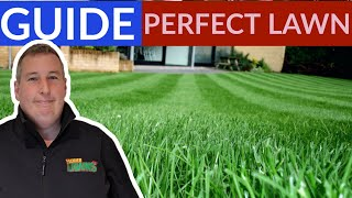 When is the BEST time to scarify a lawn | PERFECT lawn before & After