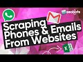 HOW TO SCRAPE ☎️ PHONES AND ✉️ EMAILS FROM WEBSITES | SCRAPING CONTACTS AND LINKS TO SOCIAL NETWORKS