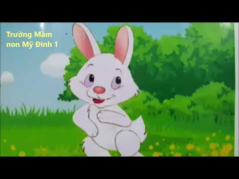 Câu chuyện: Sinh nhật của Thỏ con