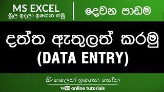 Microsoft Excel Beginner Course (Sinhala) Part 02 - Data Entry