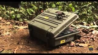 Видео: Експедиция на Explorer Cases в Борнео