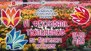 VI Фестиваль тюльпанов на Елагином острове (2018)