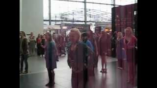 preview picture of video 'Flash mob i Kastrup Lufthavn'