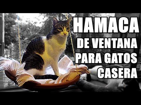 DIY CAMA, HAMACA DE VENTANA PARA GATOS (Fácil y barato!) | Anabel Golop