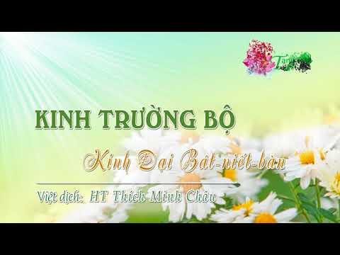 16. Kinh Ðại Bát-Niết-Bàn (Mahāparinibbāna sutta)