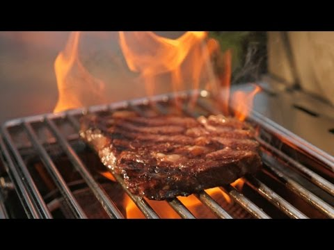 Is this the best gas grill money can buy?   NAPOLEON PRESTIGE PRO 500 – Gas Grill Review