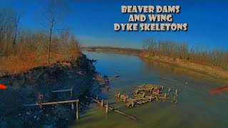 Beaver Dams and Wing Dyke Skeletons | Forck-In Quad FPV Cinematic Foxeer T-Rex DVR