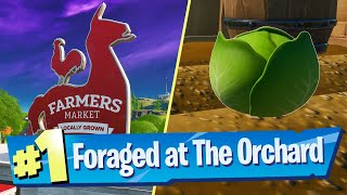 Gather or Consume Foraged Items at The Orchard Location - Fortnite Battle Royale