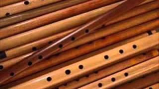 Amazing Indian Flute Ringtonesssssss (PLURAL)