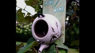 How To Make A Bird House From A Tea Pot