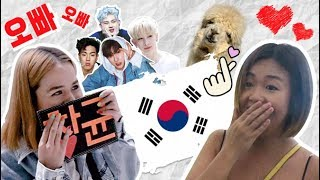 TSL Travels: Chasing KPOP Idols and Alpacas in Seoul!
