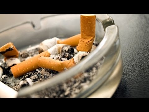 Uzależnienie od nikotyny u kotów