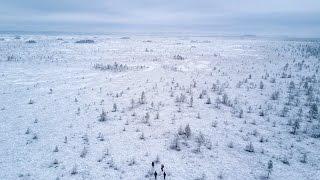 Hiking in Estonia | Soomaa bog