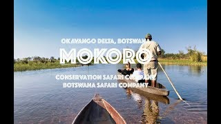 Experience it - Mokoro in the Okavango Delta on your Botswana safari itinerary.