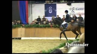 video of Quintender 2