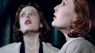 Секретные материалы, X-Files- Dana Scully, silence of the lambs