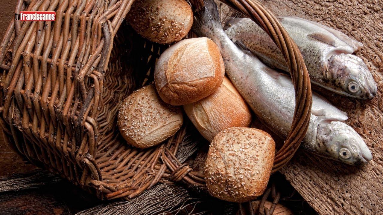 Palavra da Hora   A multiplicação dos pães