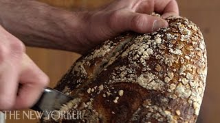 Baking bread at Tartine Bakery - Annals of Gastronomy - The New Yorker