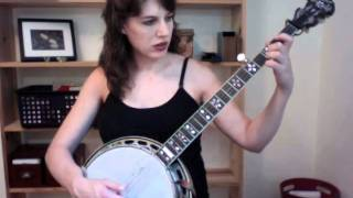 Polka On A Banjo - Excerpt from the Custom Banjo Lesson from The Murphy Method