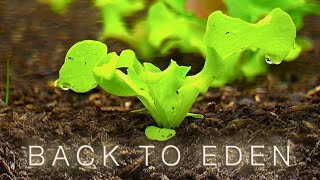 How to Grow a Vegetable Garden - Back To Eden Organic Gardening Film