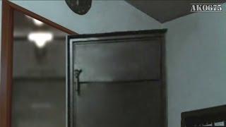 Hitler's door