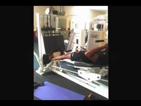 Sled Lying Reverse Calf Press (plate loaded)