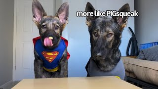 Super Hero Dogs Review Food | Part 4