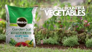 Miracle Gro Garden Soil For Vegetables And Herbs Soils Miracle Gro