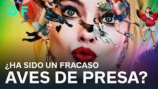 ¿Ha sido AVES DE PRESA un FRACASO? | Todo es mentira en el cine y la TV