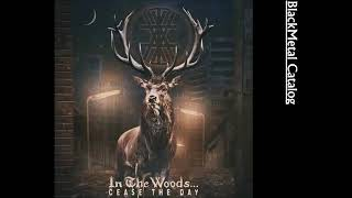 Download Lagu In the Woods    - Cease the Day (FULL ALBUM