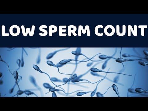 Low Sperm Motility count Treatment Permanent Cure Delhi