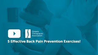 5 Back Pain Prevention Exercises