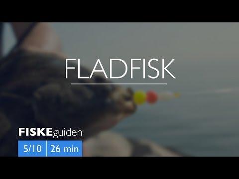 Fladfisk med Gordon P. Henriksen