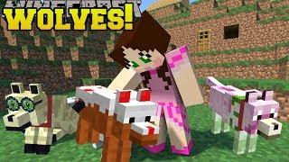 Minecraft: TOO MANY WOLVES!!! (CAKE WOLF, DIAMOND WOLF,  ZOMBIE WOLF, & MORE!) Mod Showcase